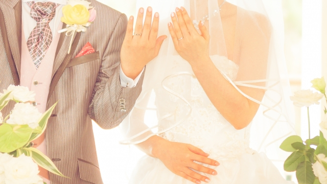 大阪結婚相談所ピュアウェディング 20代30代の婚活をサポートIBJ加盟店