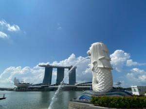 シンガポール駐在妻の日記